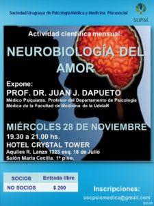 Neurobiologia del amor